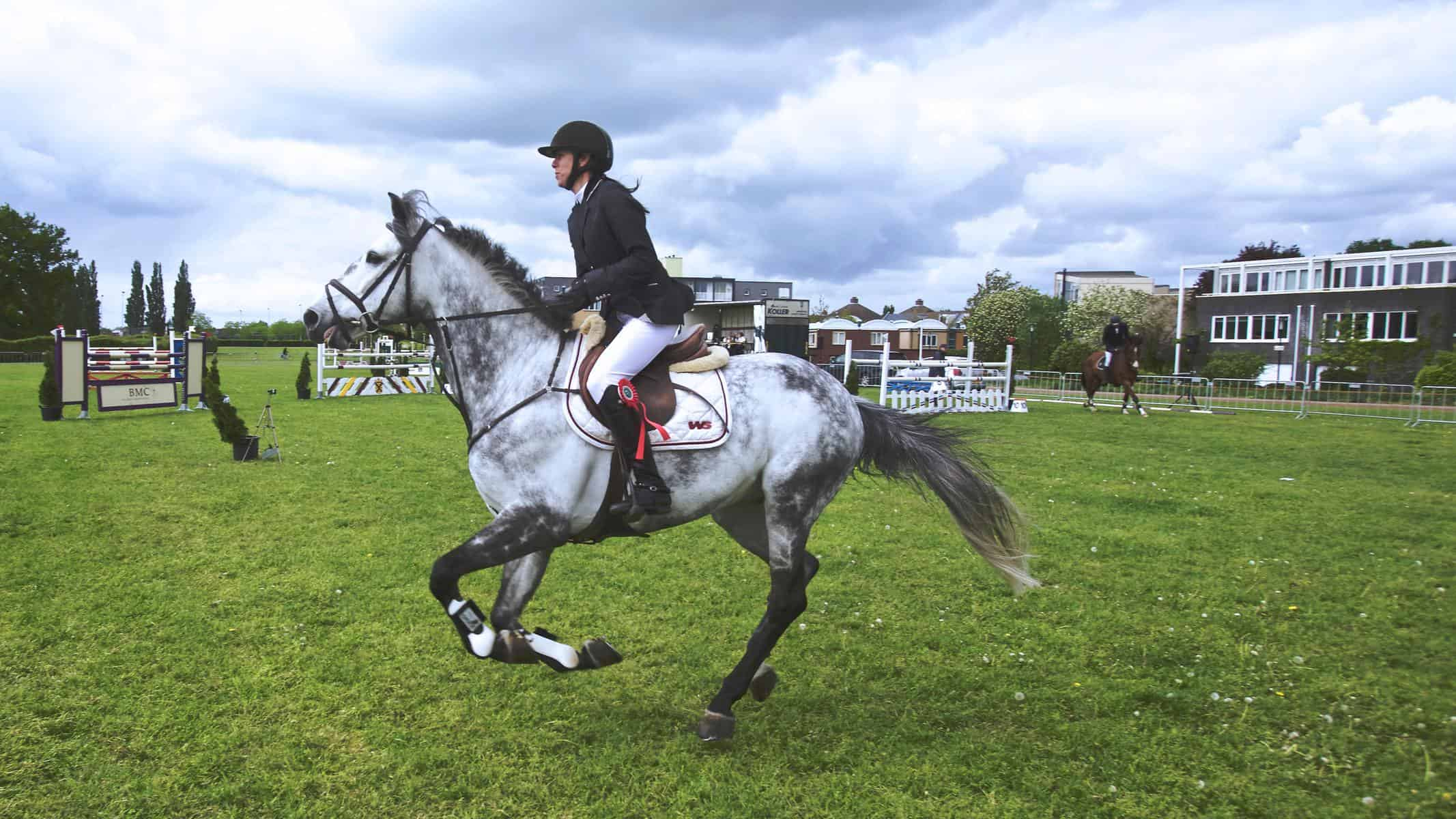 50 Stunning Names For Your Horse Seriously Equestrian