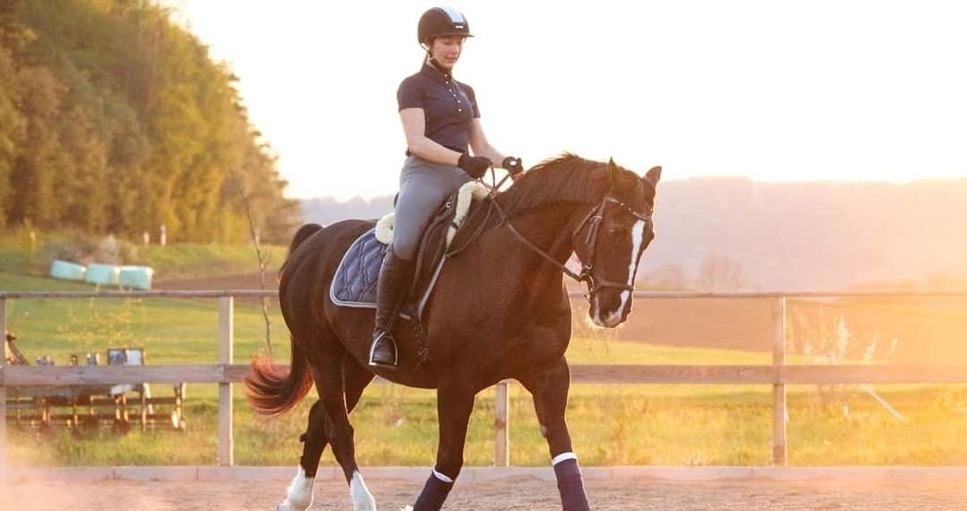 The Pro's and Cons of Leasing a Horse