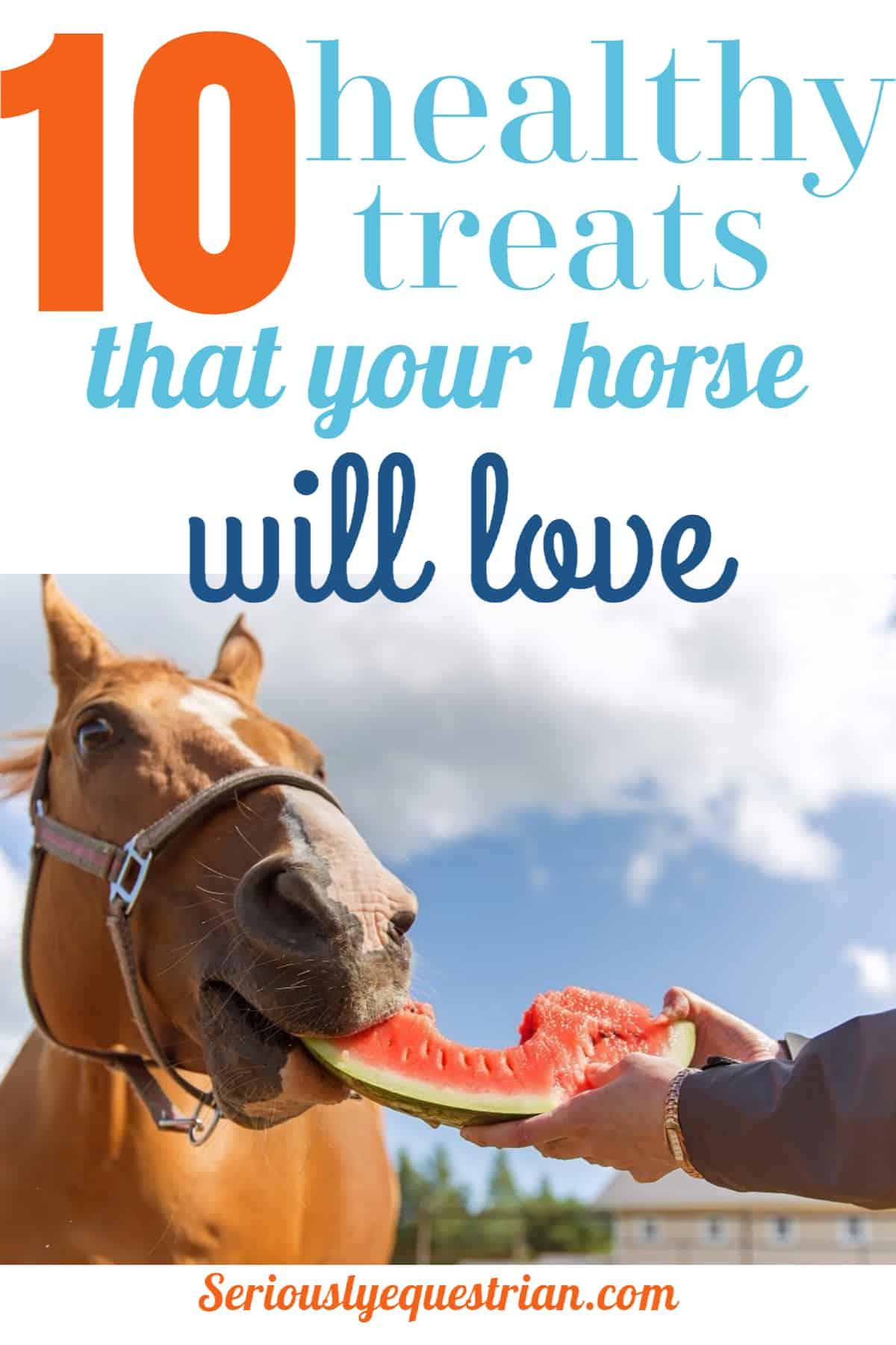 Healthy Horse Treats