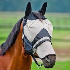 horse flymask
