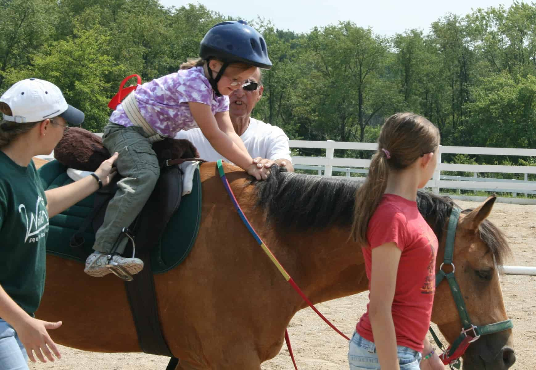 equine therapy 2