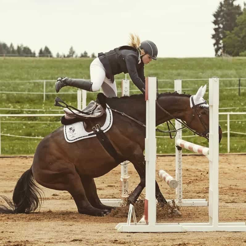 6 Ways to Stop Your Horse refusing
