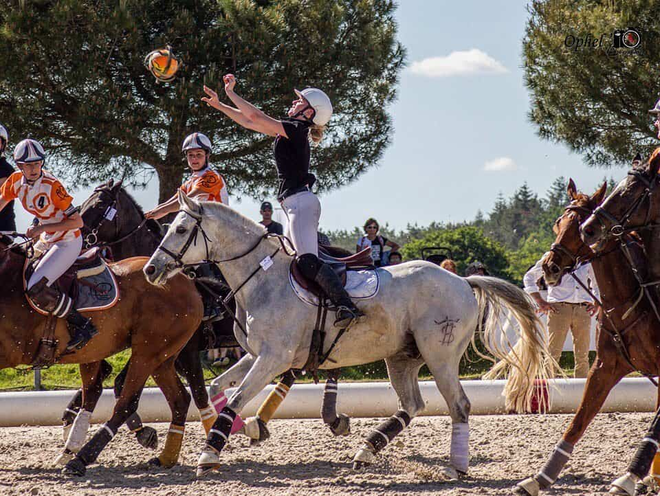 7 Unusual Equestrian Sports You've Never Seen Before
