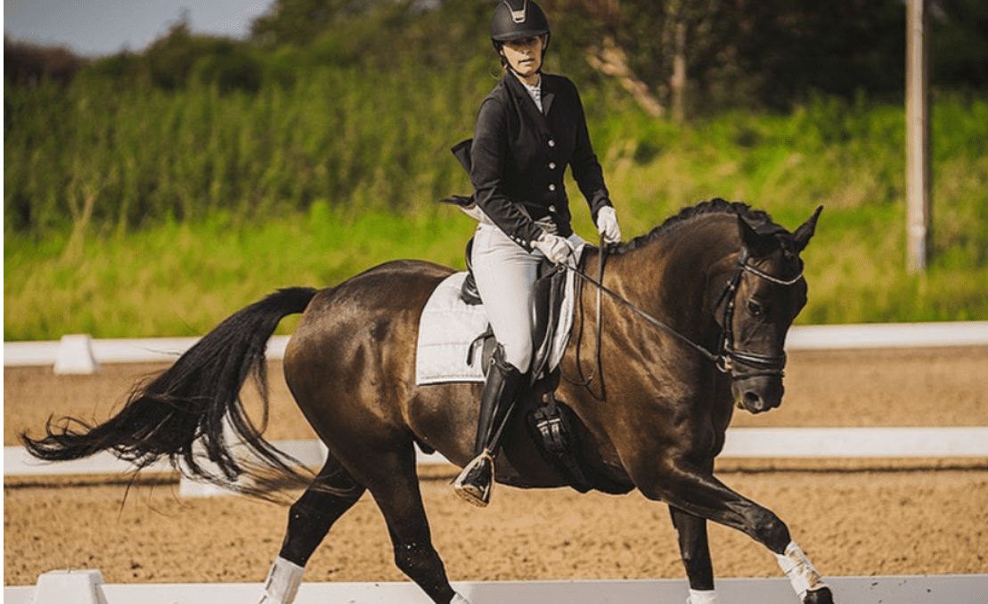 6 Tips how to improve your dressage score