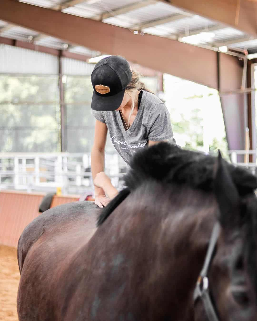 The Benefits of Chiropractic Care for Your Horse