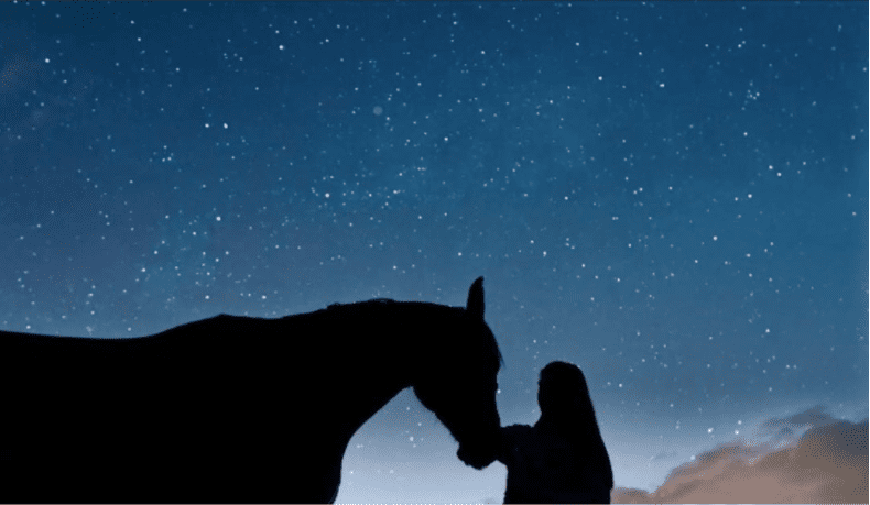 80 Astrological Names for Horses