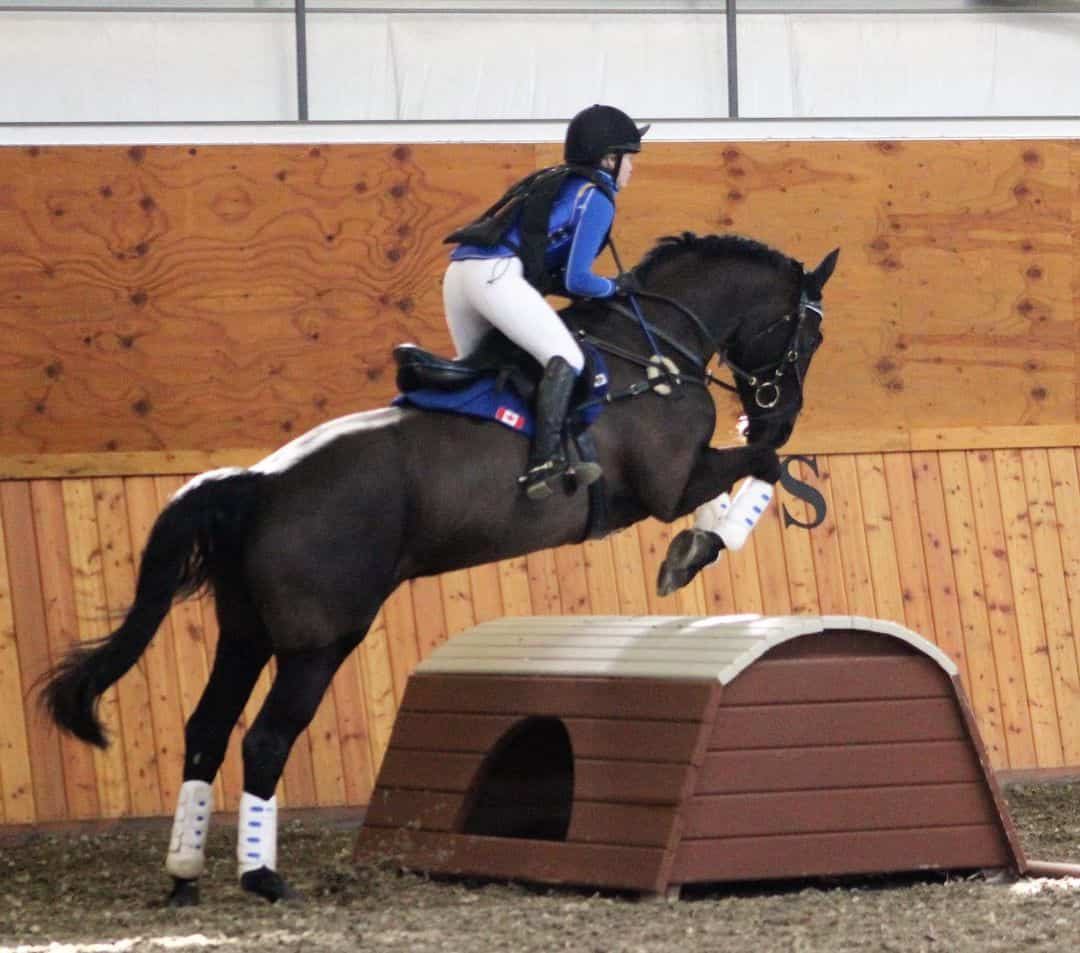 Back protector Eventing